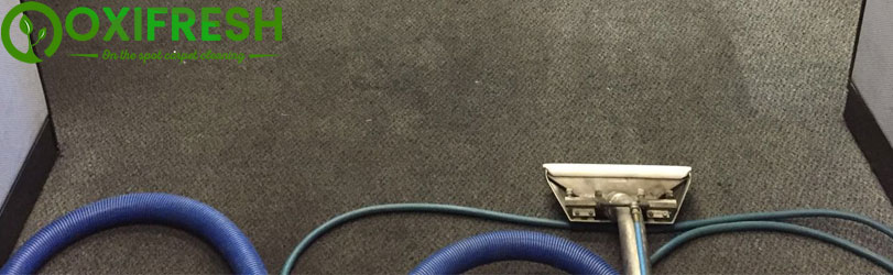Carpet Cleaning Service Adelaide