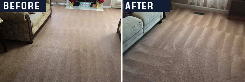 Professional Carpet Cleaning Services Perth