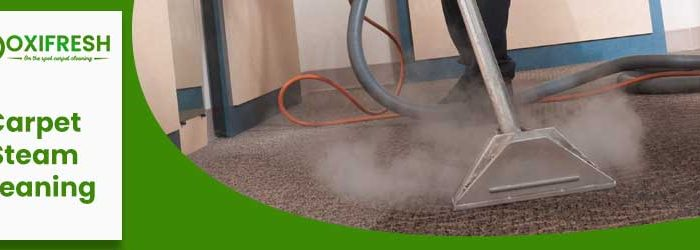 Importance Of Steam Cleaning Your Carpets